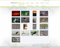 Web sites , Personal за DIFFERENTPHOTOS.com