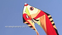 Films and clips, Video clip presented Kite festival за Bulgarian Society for Protection of the Birds